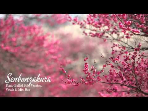 【Rae】千本桜 (Senbonzakura) -Piano Ballade ver.- を 歌ってみた 「SOLO COVER」
