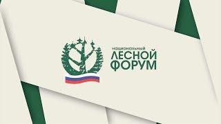 Пленарное заседание Национального лесного форума в Хабаровске