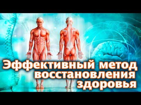Патология - Пауков В. С. Литвицкий П. Ф. - Учебник