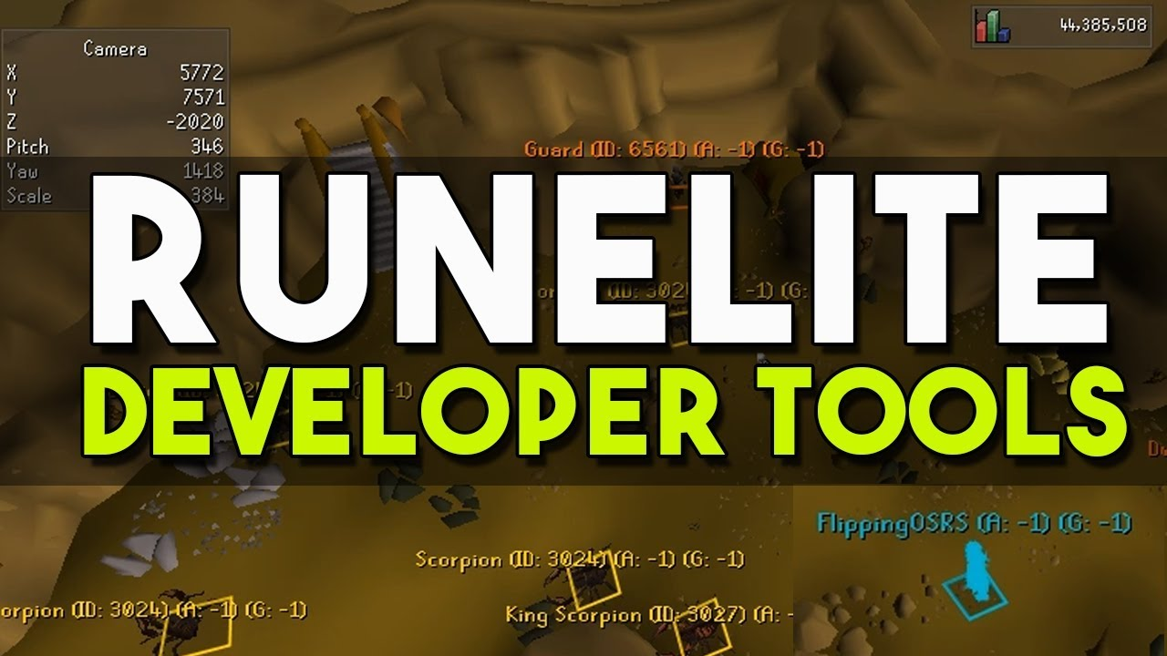 How to Enable Developer Tools in Runelite! Detached Camera, Ground Objects,  Ground Items! [OSRS]