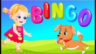 Bingo Dog Song! Kids Songs English Nursery Rhymes by Zoe and Ryan  Cartoon Animation for Children