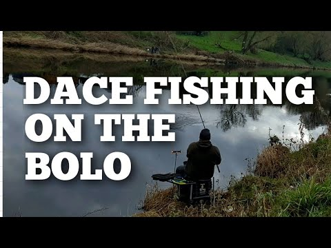 Bolo And Feeder Fishing On The River Ribble