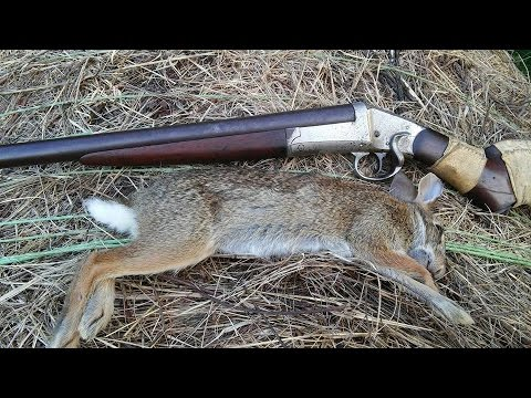 How to Hunt Rabbits With an Air Rifle - wikiHow