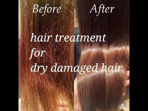 Hair treatment for dry damaged hair at home / natural hair treatment for dry hair