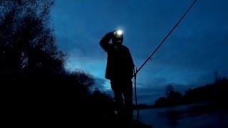 Осенняя ловля налима Ловлю Налима Осенью на Донки Вечерняя Ловля (Рыбалка Видео) - MaxFishing №31