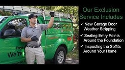 Cooper Pest's Rodent & Wildlife Exclusion Service
