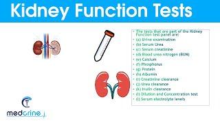 KIDNEY FUNCTION TESTS and INTERPRETATION