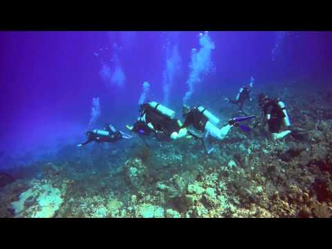 North Side Dive - Grand Cayman