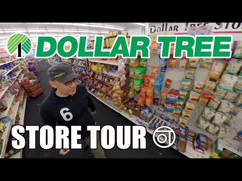 Dollar Tree Store Tour / Sugar Land Texas / Insta360 Walk Around Dollar Store Inside Family Dollar
