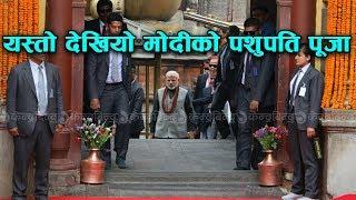 V - यस्तो देखियो मोदीको पशुपति पूजा    Narendra Modi at Pashupatinath Temple