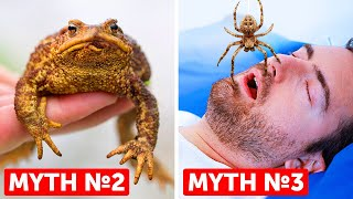 27 Myths We All Grew Up Believing But Are False