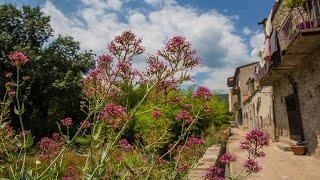 Tv-klip: Anne-Vibeke Rejser - Girona, Camping Bassegoda Park
