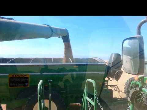 S & L Farms Harvest 2014