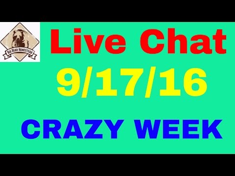 Saturday night live chat
