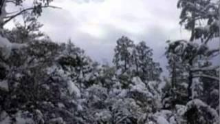 Repeat youtube video 虎落(もがり)の里╱ 驚きのシニア歌唱力・鈴木もんど⑳