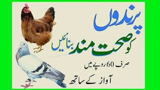 Health tips urdu by Dr.arshadپرندوں جانوروں  کو صحتمند بناؤ