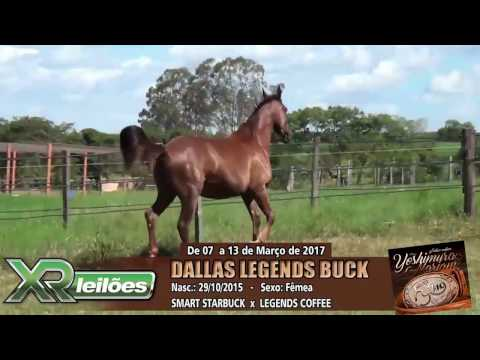 09   DALLAS LEGENDS BUCK