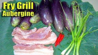 Fry Grill Aubergine - Easy Food Cooking Recipes