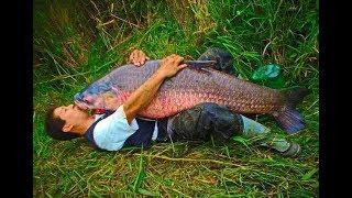 Я РЖАЛ ДО СЛЕЗ ПРИКОЛЫ НА РЫБАЛКЕ 2019 новые приколы на рыбалке до слез