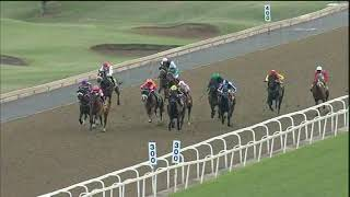 Vidéo de la course PMU MAIDEN PLATE 1200