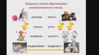 Образование множественного числа существительных РКИ (детям).