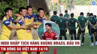 VN Sports 14/10 | ĐTVN khí thế ngút trời sẵn sàng đấu Indo, HLV UAE so sánh U22 VN ngang Hàn Quốc