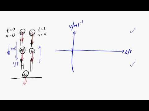 Trampoline velocity time graph