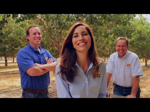 Setton Farms Harvest Video
