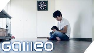 Minimalismus extrem: Minimalismus im Alltag in Japan | Galileo | ProSieben