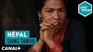 Népal : Sang tabou - L'Effet Papillon - CANAL+