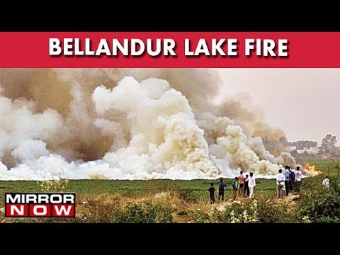Bengaluru: Polluted Bellandur Lake Catches Fire, Thick Smog Engulfs Entire Area