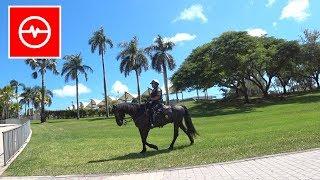 Policjanci z Miami