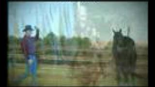 AANH The American Association of Natural Horsemen