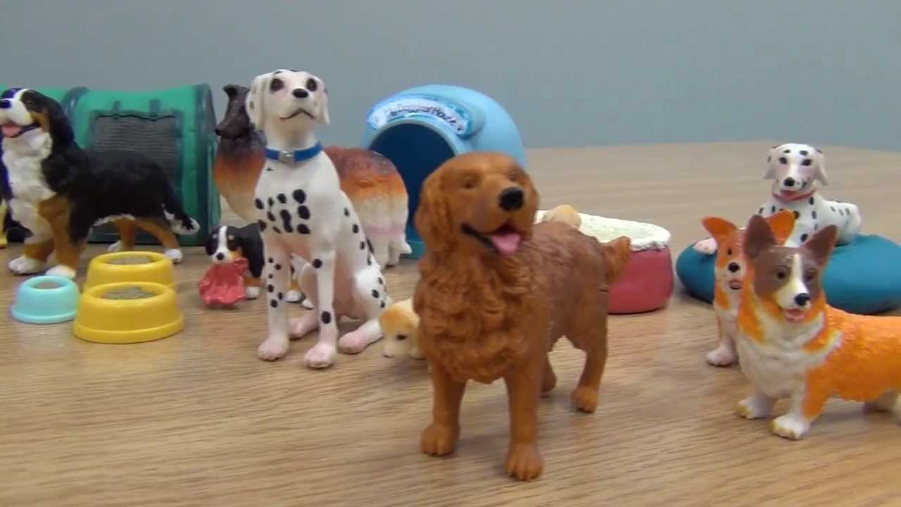 Agility Toys For Dogs Wow Blog