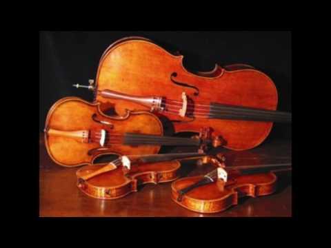 Burkholder Middle School Orchestra Festival 2017 Avatar