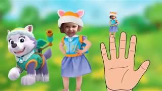 Песня семья пальчиков ЩЕНЯЧИЙ ПАТРУЛЬ на русском языке МУЛЬТИК мистер Макс и мисс Кэти новые серии