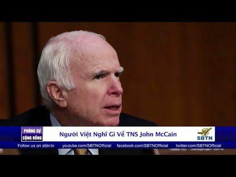 PHÓNG SỰ CỘNG ĐỒNG: Cộng đồng người Việt nghĩ gì về Thượng Nghị Sĩ John McCain?