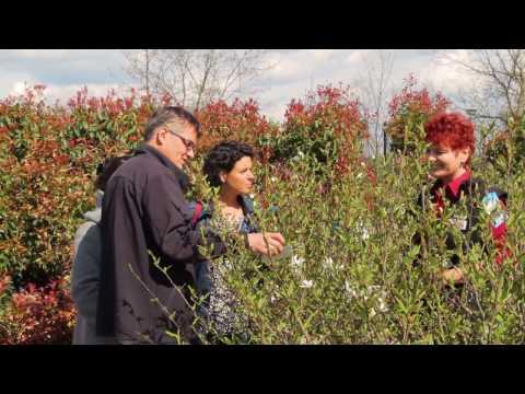 pflanzen richter delitzsch öffnungszeiten