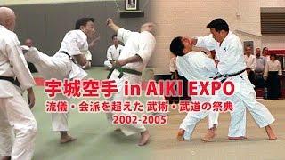 2015年9月発売 DVD『宇城空手 in AIKI EXPO 流儀・会派を越えた 武術・...