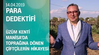 Üzüm kenti Manisa'da toprağına dönen çiftçilerin hikayesi - Para Dedektifi 14.04.2019 Pazar