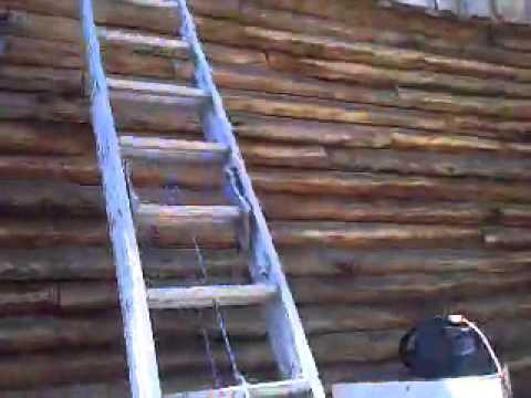 Bee removal in Arp,  Tx. 10-1-2011. Part 2 of 3