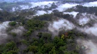 Earth from Space (A Föld az űrből) 720p HDTV (HUN)