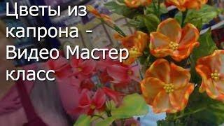 Рукоделие - Цветы из капрона - Видео Мастер-класс(http://leonardo.ru/mclasses/93/tsveti-iz-kaprona-orhidei/ Сегодня в нашем видео уроке мы научимся изготавливать цветы из капрона..., 2013-11-26T11:27:00.000Z)