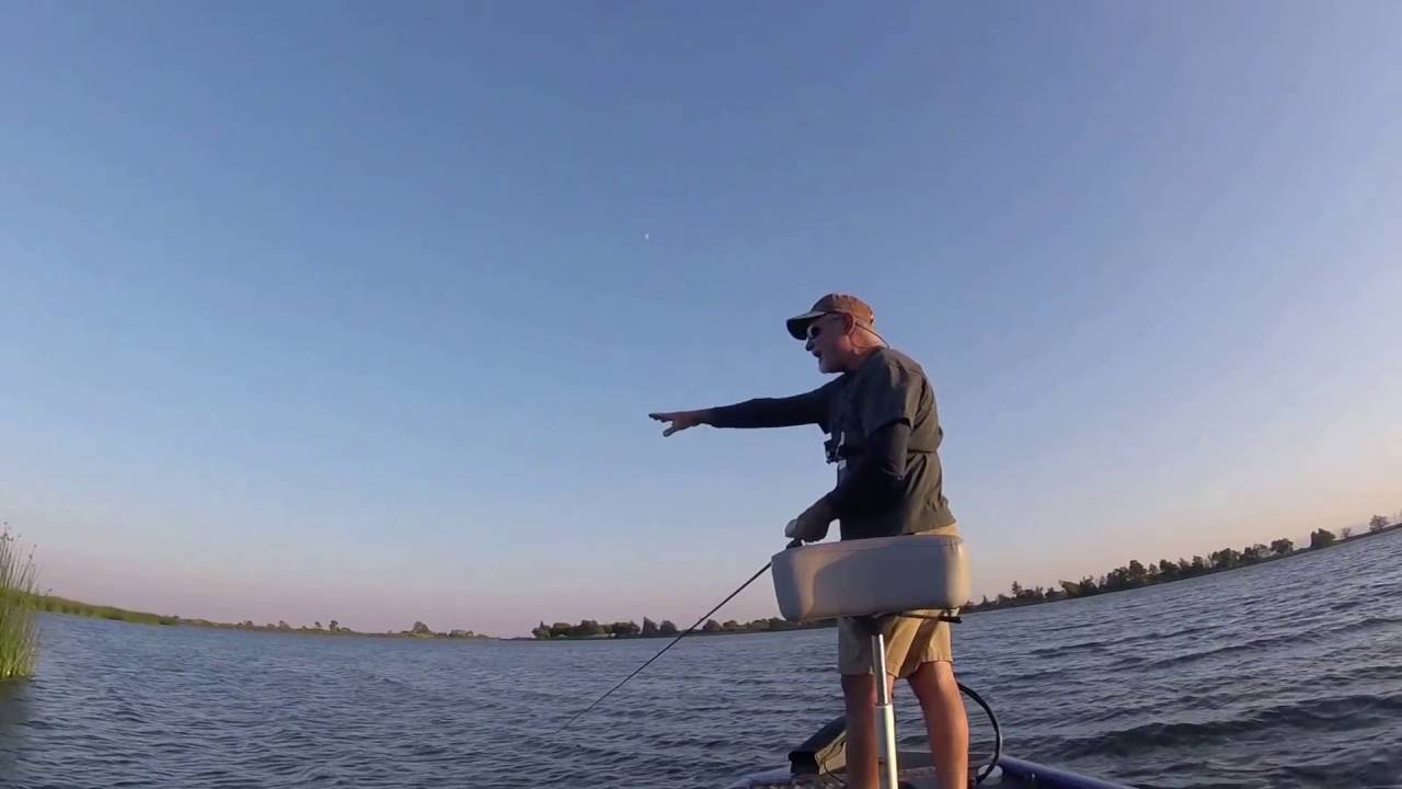 Bass fishing delta how to fish tides aug 10th for Tides 4 fishing skyway