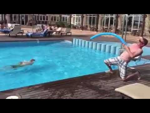 Most funny fishing way on the pool