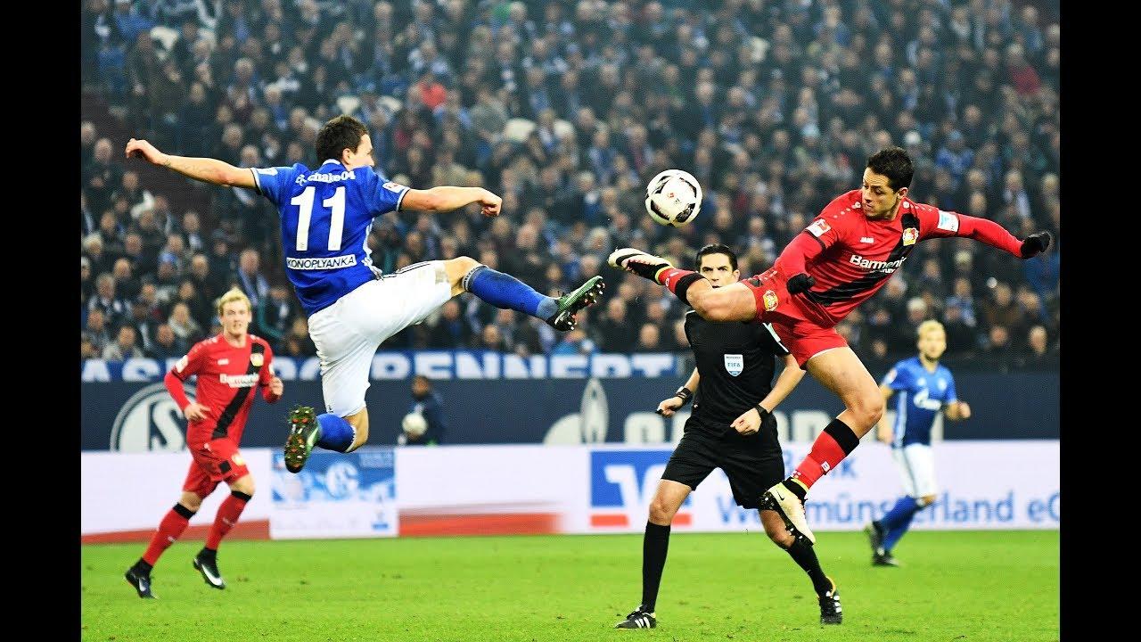 Leverkusen Schalke Tipp