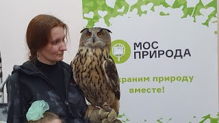 Lecture on owls for children in support of Swamp Day and nature conservation
