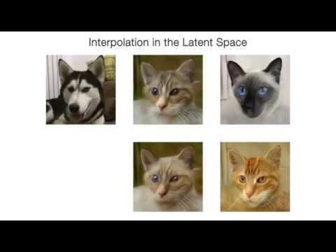 Nvidia превращает кошек в собак. Выглядит ужасающе (видео)