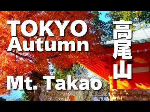 TOKYO JAPAN 秋の高尾山の紅葉ハイキング 高尾山観光 旅行 Autumn in Mt. Takao (Listed in the Michelin Guides) 東京観光 日本の紅葉 秋