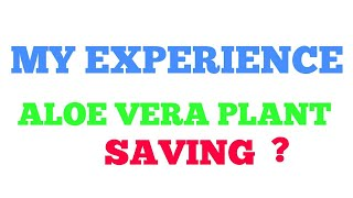 Video How to save a dying aloe vera plant download MP3, 3GP, MP4, WEBM, AVI, FLV Juli 2018